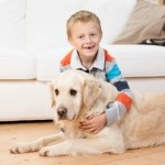 kid safe pet safe Pest Control Melbourne